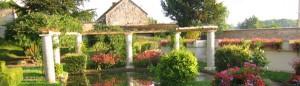 cropped-fleur-23.jpg